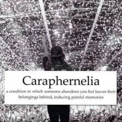 caraphernelia definition - Images for caraphernelia definition