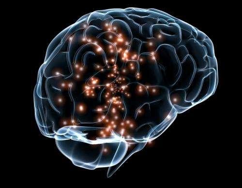 otak dengan Sertraline