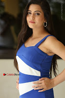 Cute Telugu Actress Shipra Gaur High Definition Po Gallery in Short Dress  0190.JPG