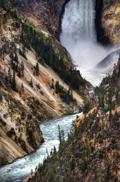 Lower Falls, Yellowstone National Park, Wyoming, USA