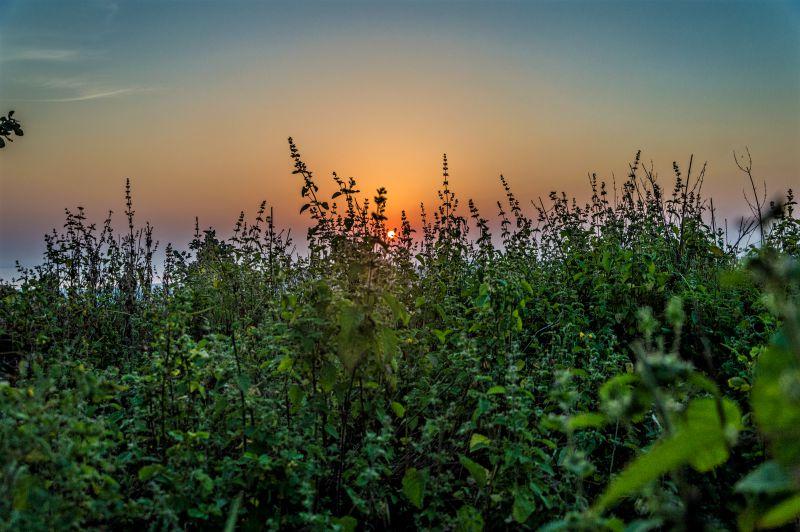 Sunrise at Chanderi