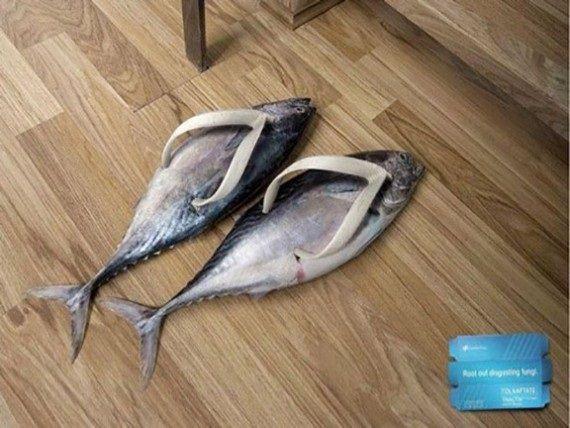Download 102+ Gambar Ikan Aneh Lucu HD Terbaru