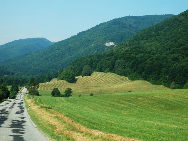 Przez zielone wzgórza łaciatą drogą... :)