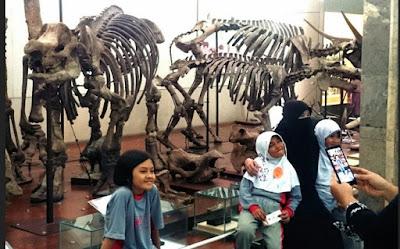Wisatawan di museum geologi