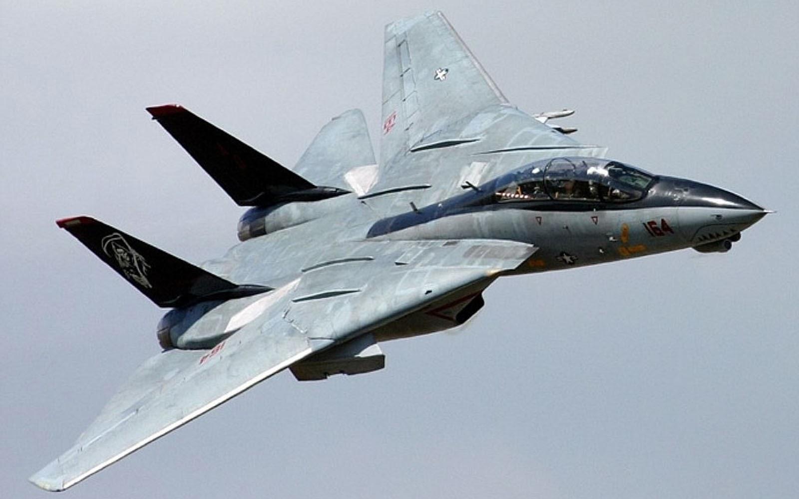 art pictures: Grumman F-14 Tomcat Wallpapers