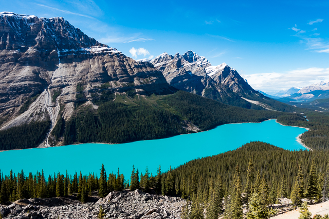 Peyto Lake - Alberta Canada - During the summer, significant amounts of glacial rock flour flow into the lake, and these suspended rock particles give the lake a bright, turquoise colour.