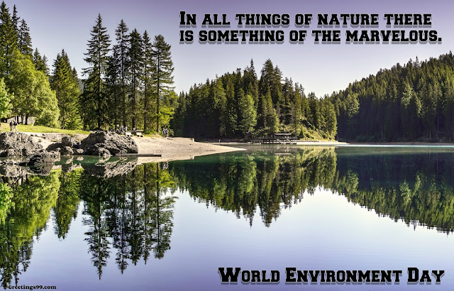 World Environment Day 2018 Quotes