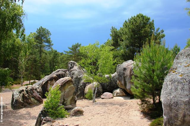 Paysage du Rocher de l'Eléphant, Larchant, (C) 2014 Greg Clouzeau