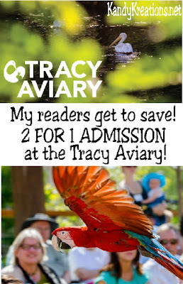 Come enjoy spending time with all of our feathered friends here at Tracy Aviary for the day! Marvel at our newest exhibit Treasures of the Rainforest, partake in one of our free interactive bird shows, or get close with some of the birds during an Amazon Adventure or pelican feeding. Get 2 for 1 Admission at the Tracy Aviary today!