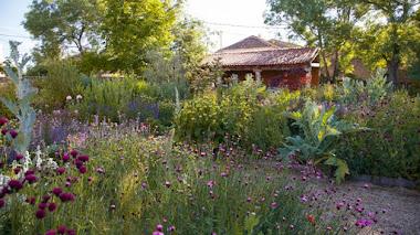 Jardín Laboratorio en Segovia de Planta Paisajistas