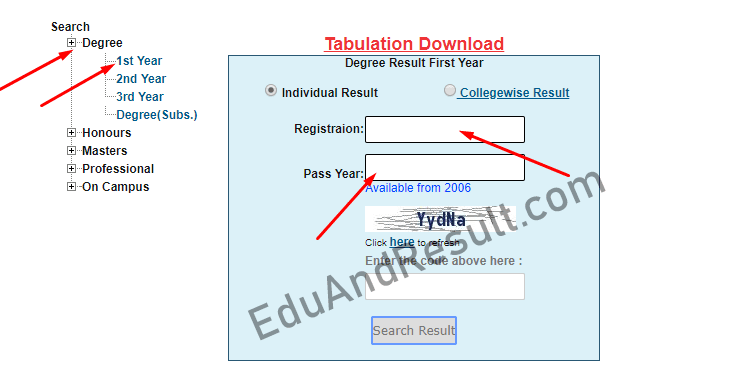 Nu Degree 1st Year Result Online