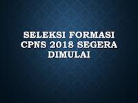 Seleksi Formasi CPNS 2018 Segera Dimulai