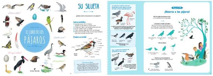Libro informativo de conocimientos El gran libro de los pájaros
