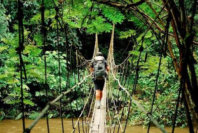 Rope bridge at Kudremukh national park