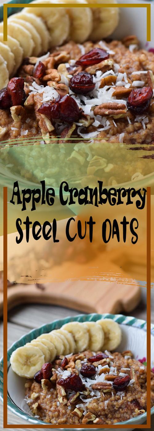 Apple Cranberry Instant Pot Steel Cut Oats Recipe