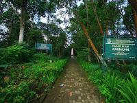 Taman Junghuhn Lembang, Disini Botanikus Jerman Penyebar Kina di Indonesia Bersemayam
