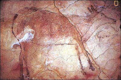 Dibujo de cierva en la Cueva de Altamira