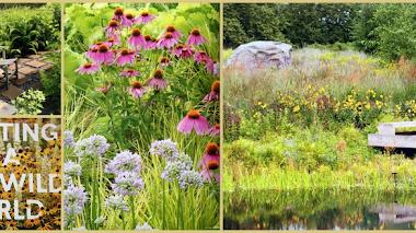 Reinventando jardines naturalistas. Planting in a Post-Wild World