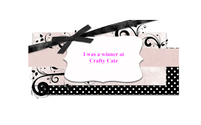 A Top Three  Placement at Craft Catz CHG 3ly470