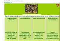 http://www.ceipjuanherreraalcausa.es/Recursosdidacticos/SEXTO/datos/02_Cono/datos/05rdi/04/03.htm