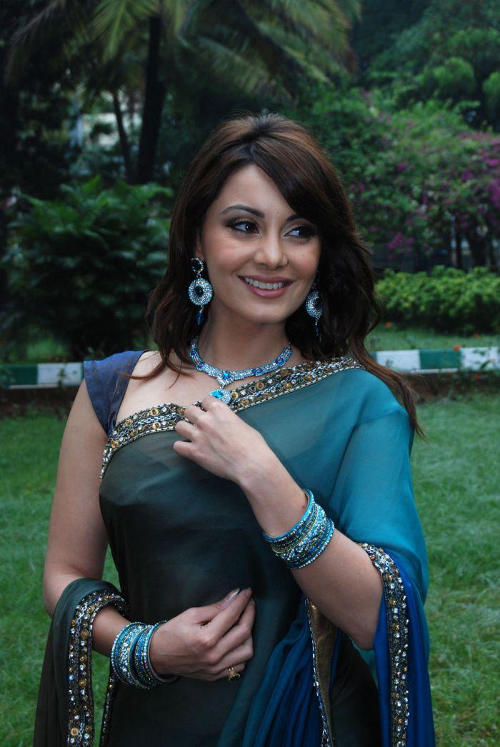 Hot Indian Actresses Manisha Lamba Hot In Saree-6395