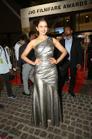 Rakul Preet Singh in Shining Glittering Golden Half Shoulder Gown at 64th Jio Filmfare Awards South ~  Exclusive 052.JPG