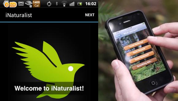 تطبيق شبيه بPokemon Go لجمع الكائنات الحقيقية