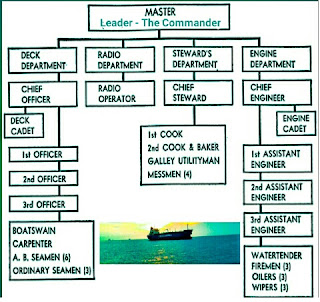 Vessel organisation