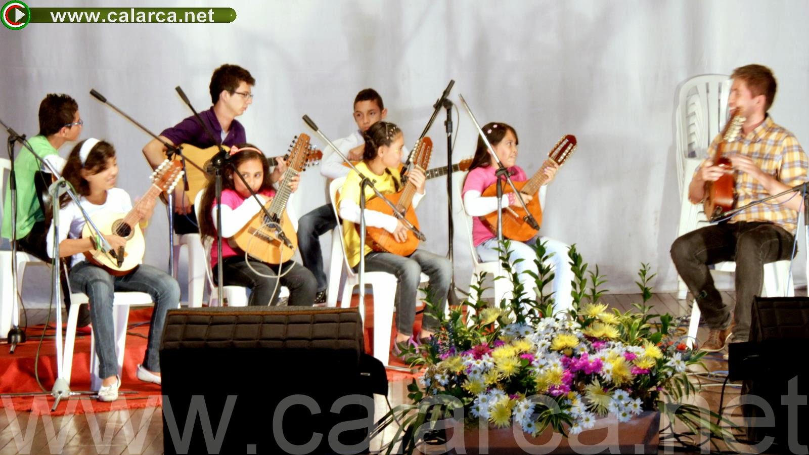 Cuerdas Andinas Colombianas Bandola