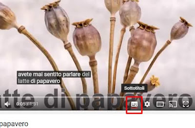 Come attivare i sottotitoli nei video di Youtube