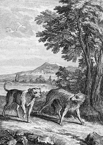 El Lobo Y El Perro Fabula De Jean De La Fontaine Y Felix M