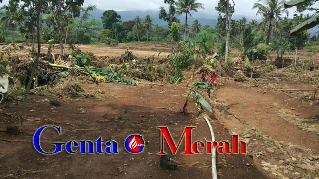 Puluhan Hekra Sawah di Lampura Hancur Total, Diterjang  Banjir Bandang