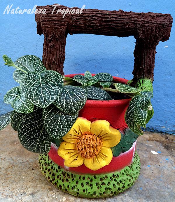 Variante de maceta de barro dando el aspecto de un pequeño pozo donde crece en su interior una planta ornamental