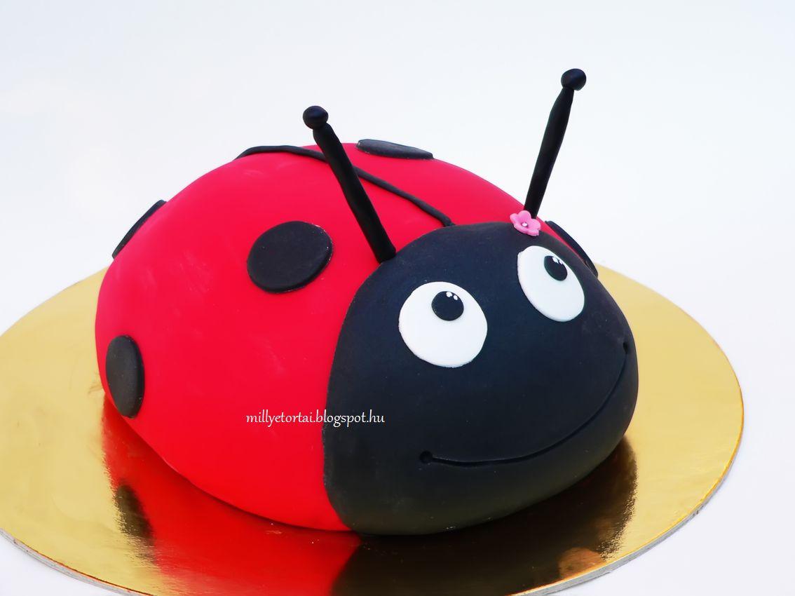 katicabogár torta képek Millye finomságai: Katicabogár torta és még egy kis meglepetés  katicabogár torta képek