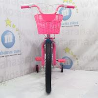 18 golden juicy CTB Sepeda Anak