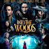 INTO THE WOODS (cine)