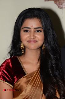 Actress Anupama Parameswaran Stills in Silk Saree with Shatamanam Bhavati Team at Sandhya Theater  0027.JPG