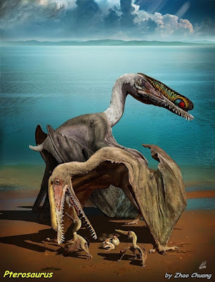 Sebanyak 215 Fosil Telur Pterosaurus Telah Ditemukan