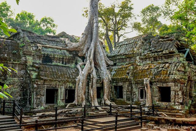 Ta Phrom - Angkor - Cambodge