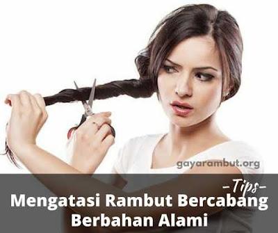 tips mudah mengatasi rambut bercabang_6322014