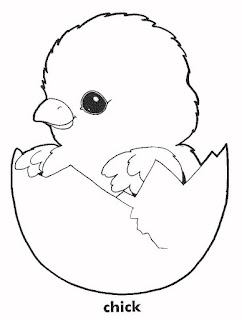 Cute Chick Animals Coloring Pages