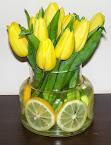 Żółta strona tulipana