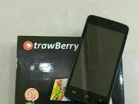 Firmware Strawberry S10 By_Filehandphone.com