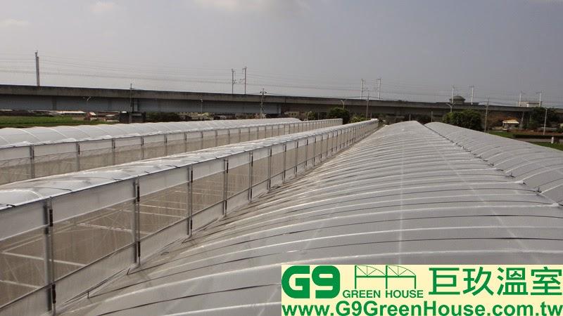 28.圓鋸鋼骨加強型溫室結構通風口每二米防風桿固定完成外觀
