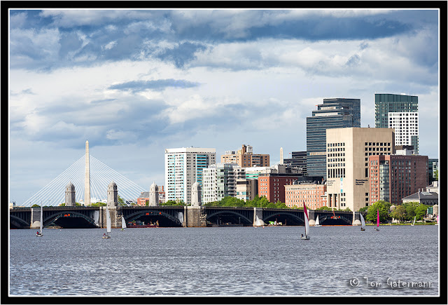 Sail boats on the Charles River in Boston, MA.