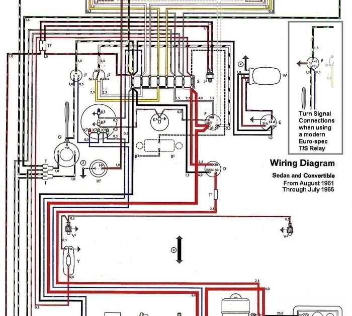 Free Auto Wiring Diagram: 19621965 VW Beetle Electrical