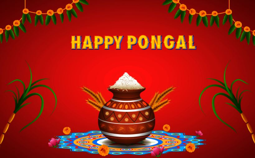 Top 50 Pongal Wallpapers And Images Hd 2018 Happy New