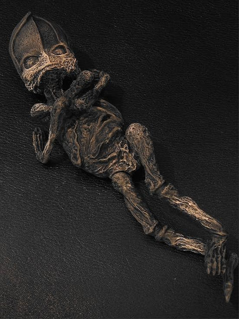 Russian mummified alien body