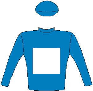 Oh Susanna - Jockey Silks - Blue, white square, blue sleeves and cap