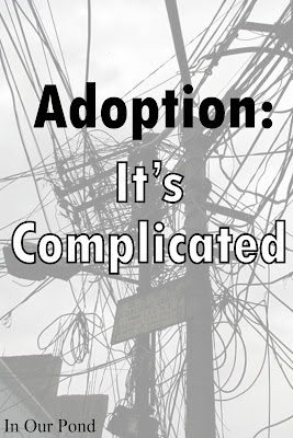 Adoption: It's Complicated (In Our Pond)
